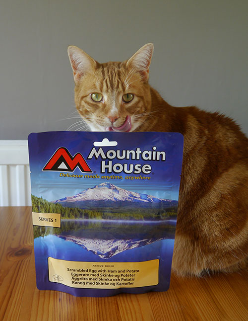 picture of freeze-dried food and cat