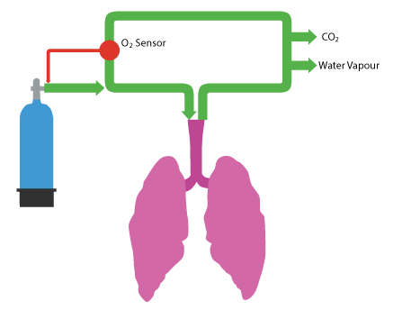 breathing loop with oxygen added as required